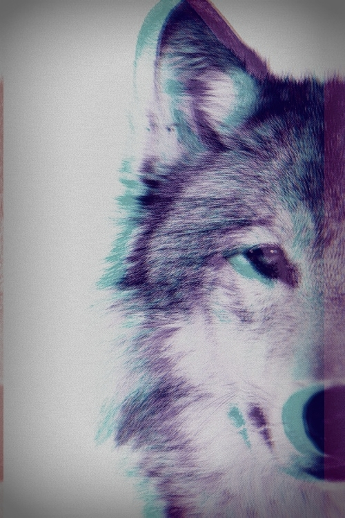tumblr_static_7t5vwzwvnasccg8wsocgosc8w