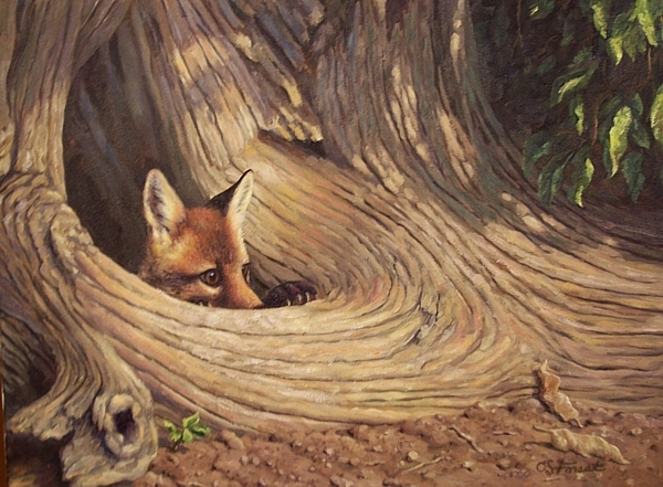 fox-hole-by-crista-forest